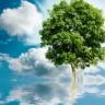 Sretan vam Dan zaštite okoliša!