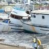 Tsunami u SAD-u nije izazvao veću materijalnu štetu