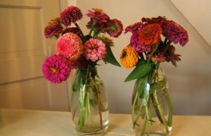 Kako cvijeće u vazi održati dulje svježim?