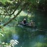 5 prekrasnih kišnih šuma koje morate posjetiti