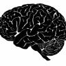 5 stvari koje muče visokointeligentne ljude