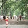 Dovoljno je 20 minuta u parku za bolje raspoloženje