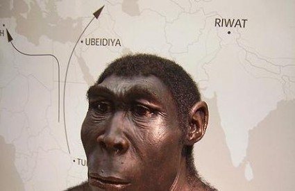 Homo erectus prvi je kuhar