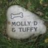 Kako dostojno pokopati kućnog ljubimca?