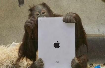 Kako Muji stoji novi iPad