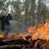 Šumski požar u Čileu krivac za smrt petorice vatrogasaca