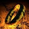 Amazon će snimati Gospodara prstenova na Novom Zelandu