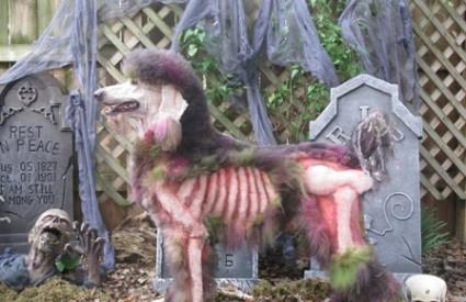 Ekstremni oblik uljepšavanja psa