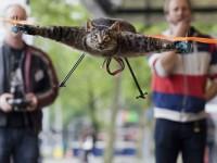 Vlasnik pretvorio svoju mrtvu mačku u helikopter