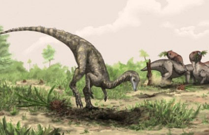 Nyasasaurus parringtoni bio je veličine labadora
