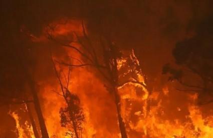Kalifornija nestaje u požarma...