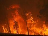 Požari odnose milijarde australskom turizmu