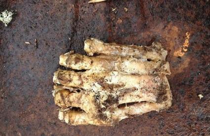 Čovjek nije, medvjed nije ... mora biti Bigfoot :)