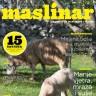 Časopis Maslinar za travanj na svim kioscima