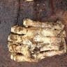 Pronađeno stopalo Bigfoota?