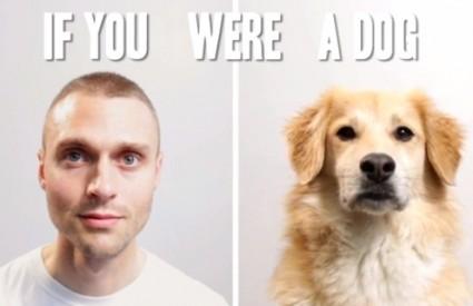 Kako bi živjeli kao pas?