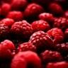 Maline - superhrana za bolje zdravlje