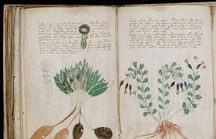 Voynich manuskript - prevara ili ... ? :)
