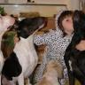 U pomoć životinjama nam stiže Indigo