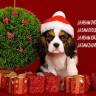 Treba li udomljavati životinje kao božićni poklon?