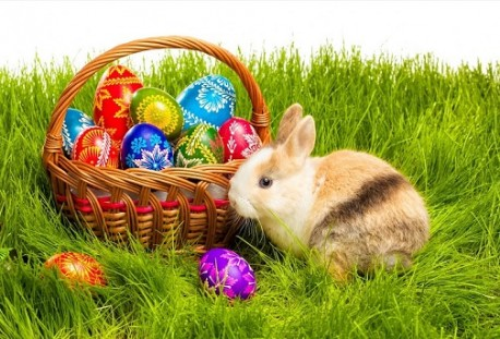 Potjera za uskršnjim jajima zabavlja djecu