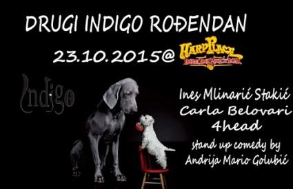 Udruga Indigo slavi drugi rođendan