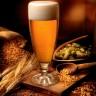 Smanjili bi udio alkohola u pivu?