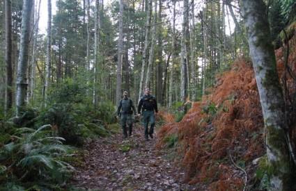 Pravda mračne šume zatvara tjedan