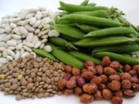 Prehrana koja će spasiti živote i planetu