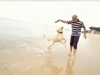 Kako nam psi poboljšavaju zdravlje?