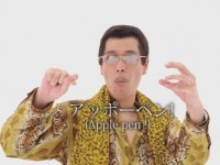 Pen-Pineapple Apple-Pen (PPAP)