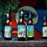 Art Park pivo by Medvedgrad & Pimp My Pump