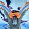 Svjetsko prvenstvo u plivanju - Gordan Kožulj komentira na Eurosportu