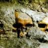 Pronađen astečki toranj od lubanja