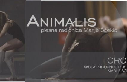 Marija Ščekić ima sjajnu radionicu