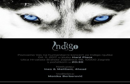 Dođite na Indigo party!