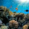 Klimatske promjene prijete i zaštićenim prirodnim lokalitetima