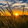 Sunce se oduvijek povezivalo s boljim raspoloženjem