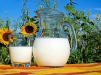 Mlijeko i mliječni proizvodi ne produžavaju život