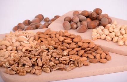 Česti alergeni - orašasti plodovi