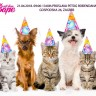 Peti rođendan Pet shopa Šapa