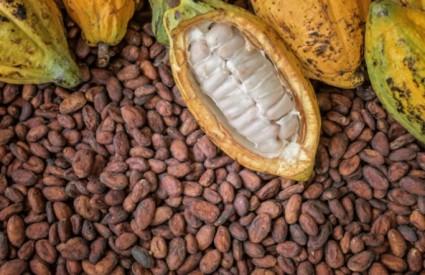 Kakao je stvarno hrana bogova