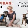 Ksenija Pajić u kampanji za pse