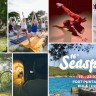 Svestrane radionice 16. Seasplash festivala!