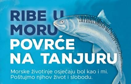 Ribe žele živjeti