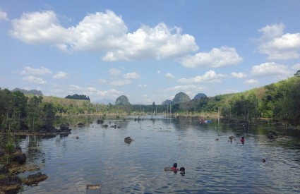 Da, i ovako može izgledati džungla :)