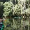 Kajaking kroz mangrove