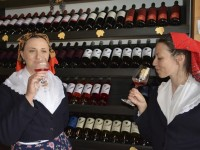 Otvara se Prvi hrvatski muzej vinogradarstva i vinarstva