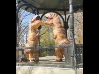 Dinosauri plešu na Tuškancu