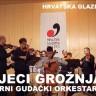 Koncert Gudačkog orkestra HGM-a u 'Lisinskom'